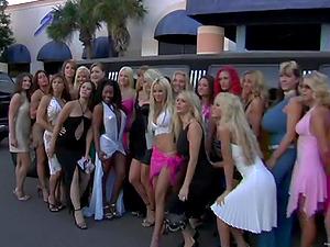 Wild soiree ladies are having joy in a night club
