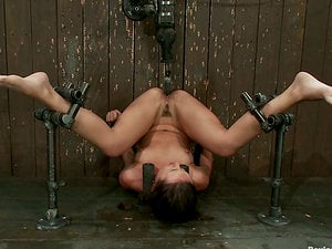 Huge-titted Isis Love Face Sitting and Frolicking Stunner Sinn Sage in Restrain bondage Vid