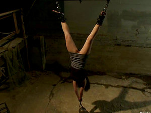 Big-chested Stunner Dana vixen Dangles Upside Down to Get Frigged and Watered