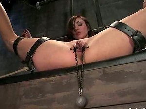 Princess Donna Dolore gets trussed and loves some hot banging