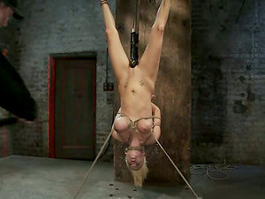 Haley Cummings drapes upside down and gets toyed