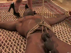 Imperious Flower Tucci Rails a Black Man's Penis after Tantalizing Him