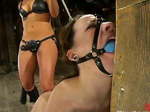 Tied up Sandra Romain gets her bootie opened up by Dana Dearmond
