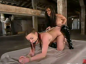 Deja Daire holds Timid with chain, fucking her from behind