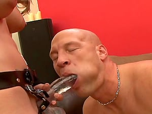 Bald Masculine Fellow Being Pegged With A Strap On Gonzo