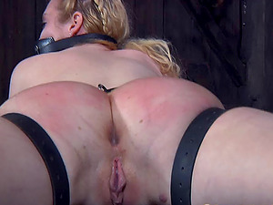 Adoring blonde with a ring gag plowed up her moist hatch