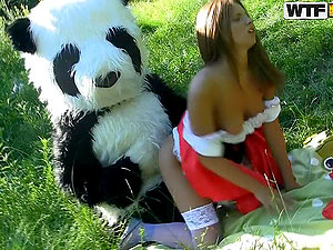 I've Always Desired A Panda Otter To Fuck Me