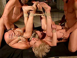tied up bitches get their butt-holes fucked in hot bondage & discipline vid