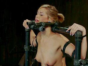 That device makes Tara Lynn Foxx perceive so numb!