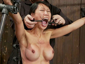 Hot Asian Chick Tia Ling Strapped and Tormented in Sadism & masochism Vid