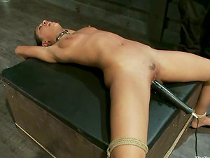 Sexy Lyla Storm gets tied up and clothespinned