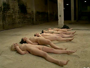 A few slender chicks get tied up and pulled by the puffies in a basement