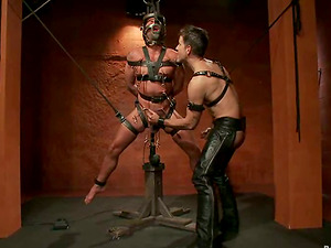 Dominic Pacifico and Master Avery have ardent rear end style hump in Domination & submission vid